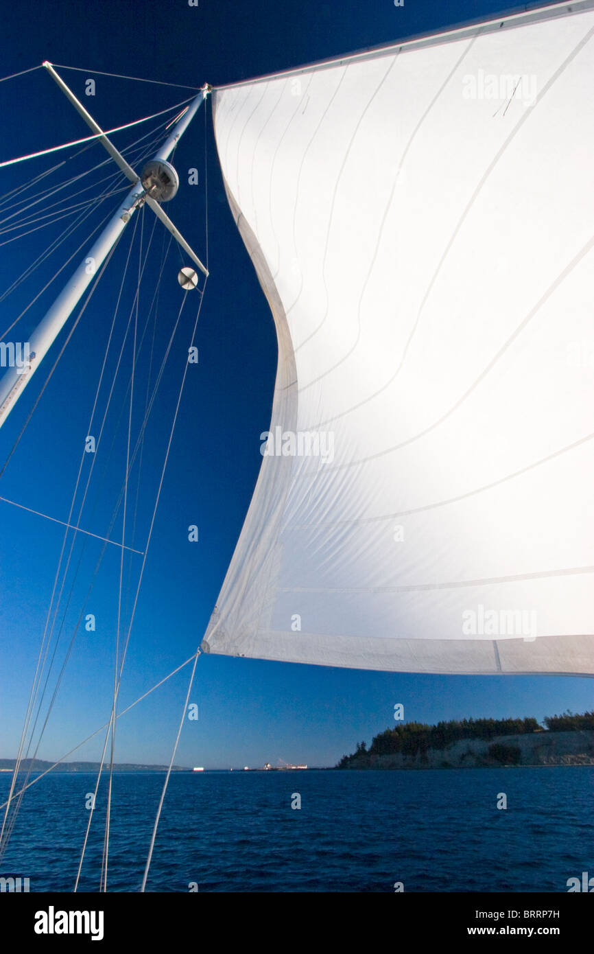 White sail sailboat sailing ocean blue sky, Puget Sound, Washington, USA - Stock Image