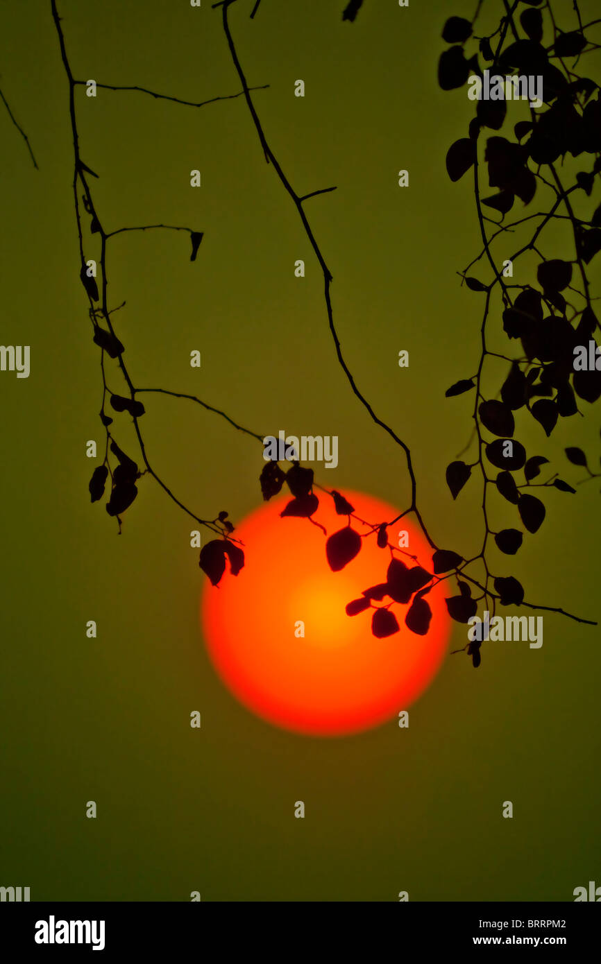 A large orange-red sun hangs in a thick atmosphere soon before sunset. - Stock Image