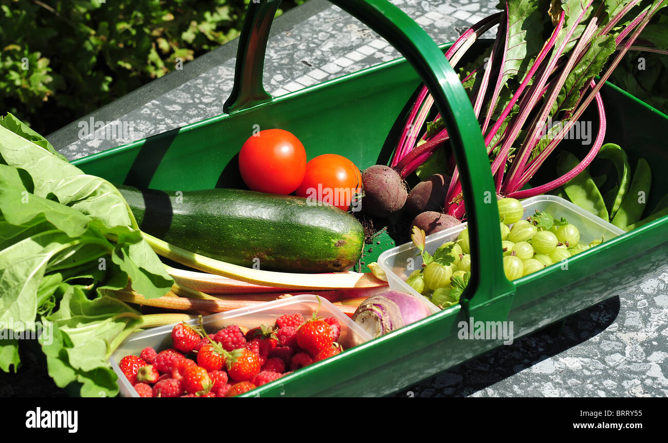 Gardeners trug filled with fresh fruit and vegetables. Stock Photo