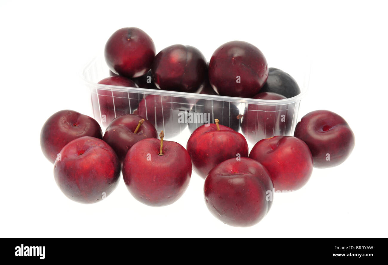 Prunus salicina 'Black Amber' plums taken against a white background. A vitamin rich variety that is full - Stock Image