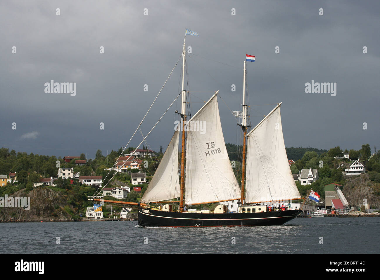 Lotos, The Tall Ships Races 2008, Bergen - Stock Image