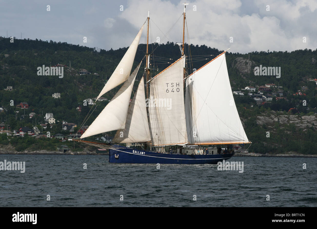 Galant,The Tall Ships Races 2008, Bergen - Stock Image