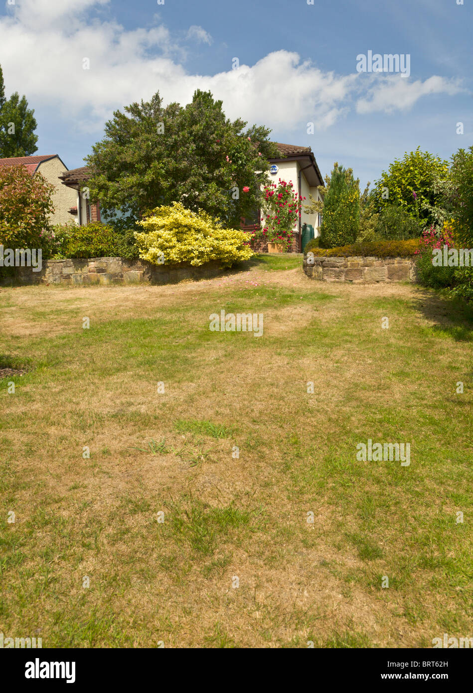 Parched lawn through lack of rain, England - Stock Image