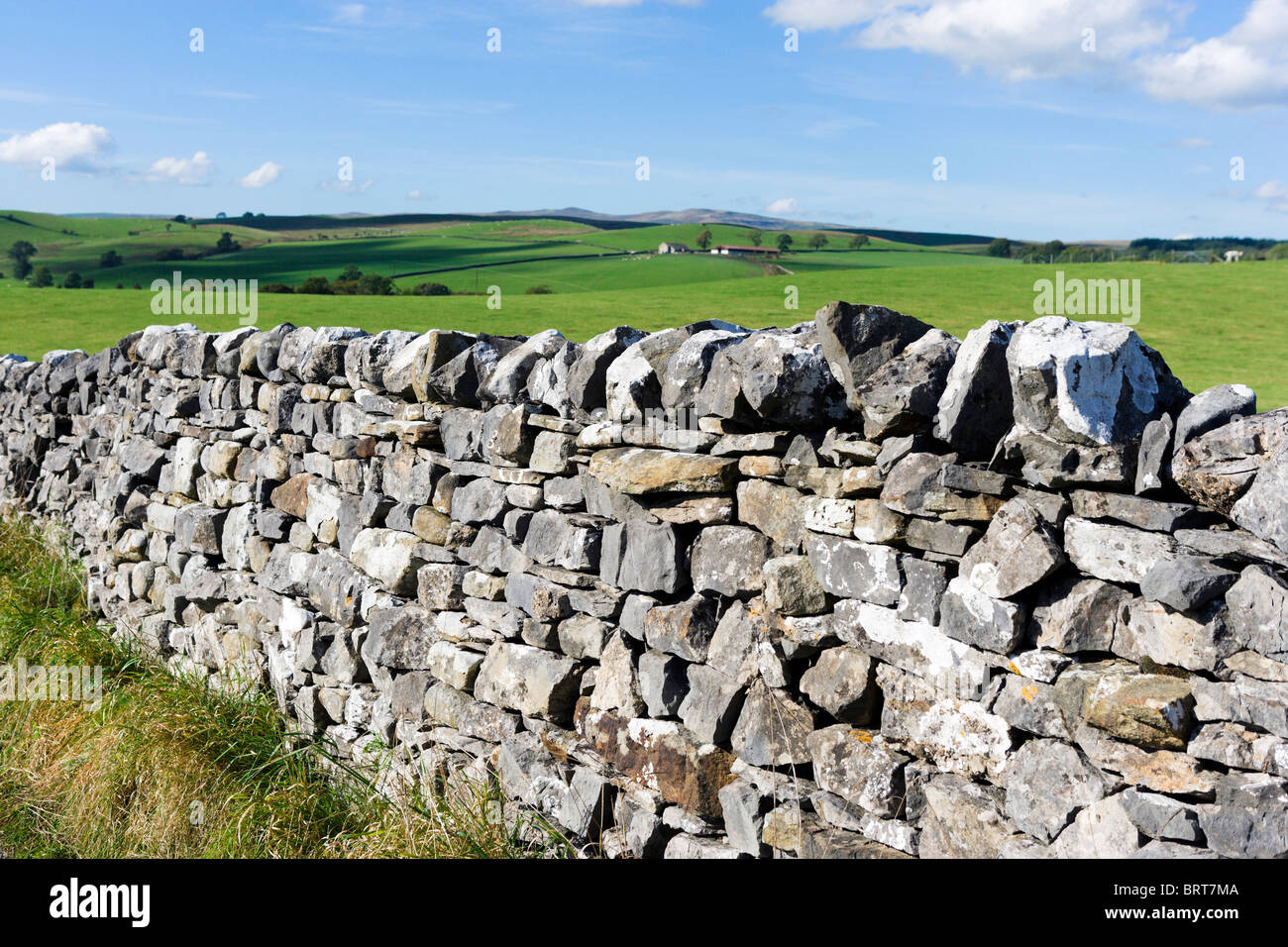 Dry stone wall in the countryside near Malham, Wharfedale, Yorkshire Dales National Park, England, UK - Stock Image