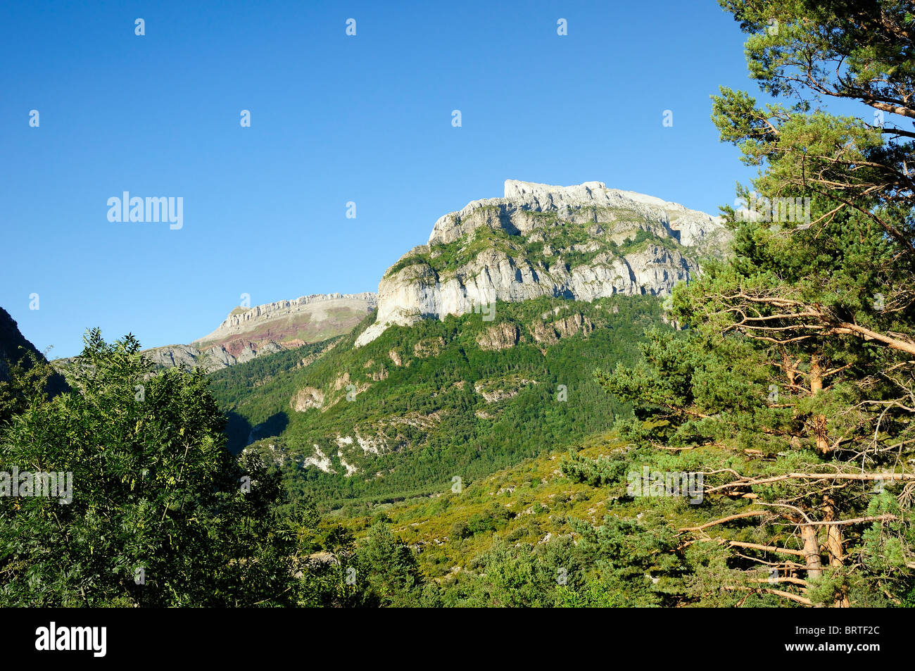 Pena d'Aguerri and Castillo d'Acher karst limestone peaks, Pyrenees, above wooded Hecho valley, Huesca, Aragon, Stock Photo
