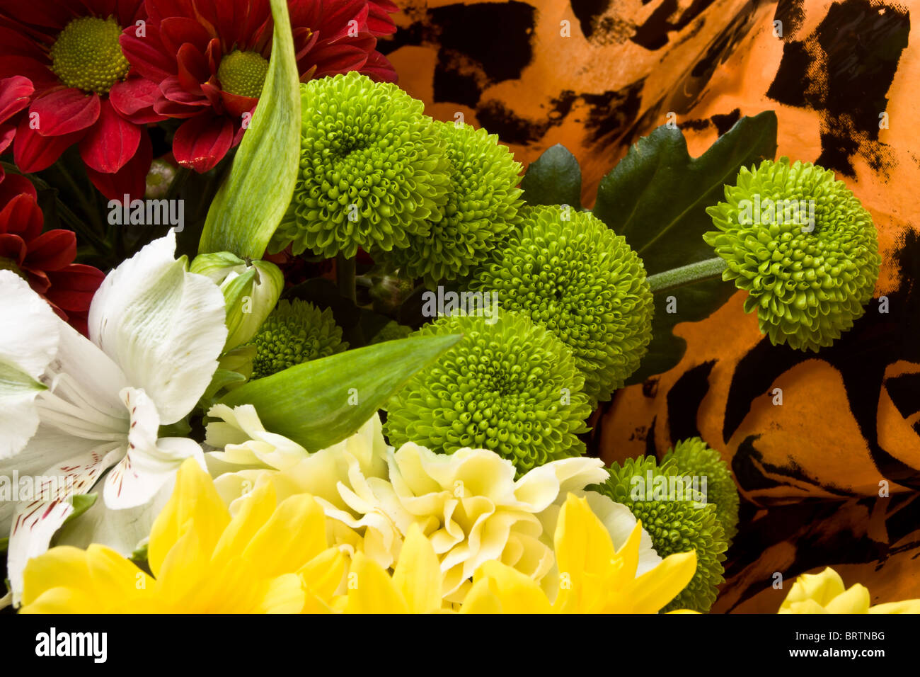 Flowers wrapped in cellophane stock photos flowers wrapped in close up background of beautiful flower bouquet wrapped in cellophane stock image mightylinksfo