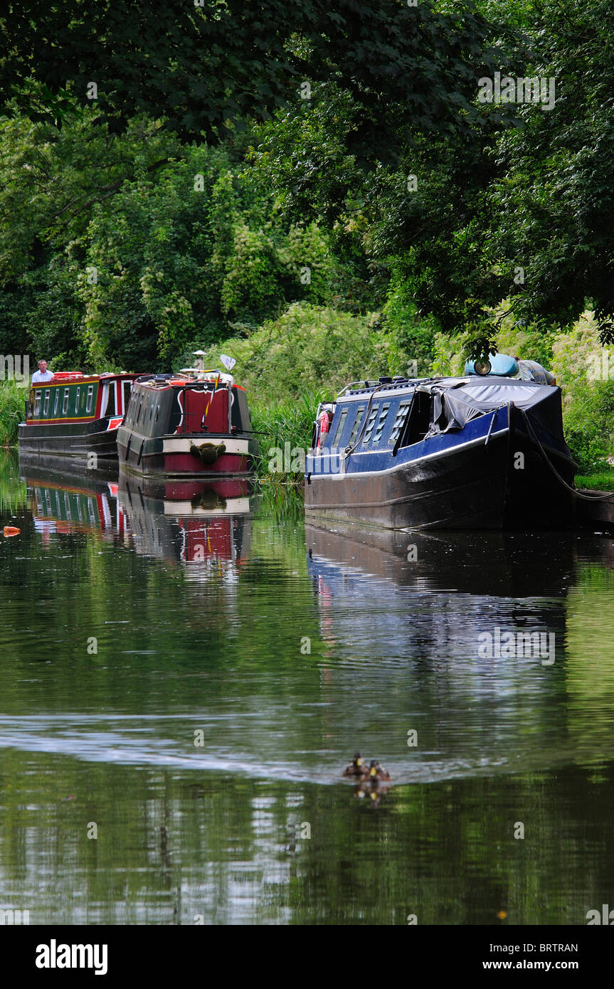 A few narrow boats moored on the Kennett and Avon canal at Bradford-on-Avon, Wiltshire, UK - Stock Image
