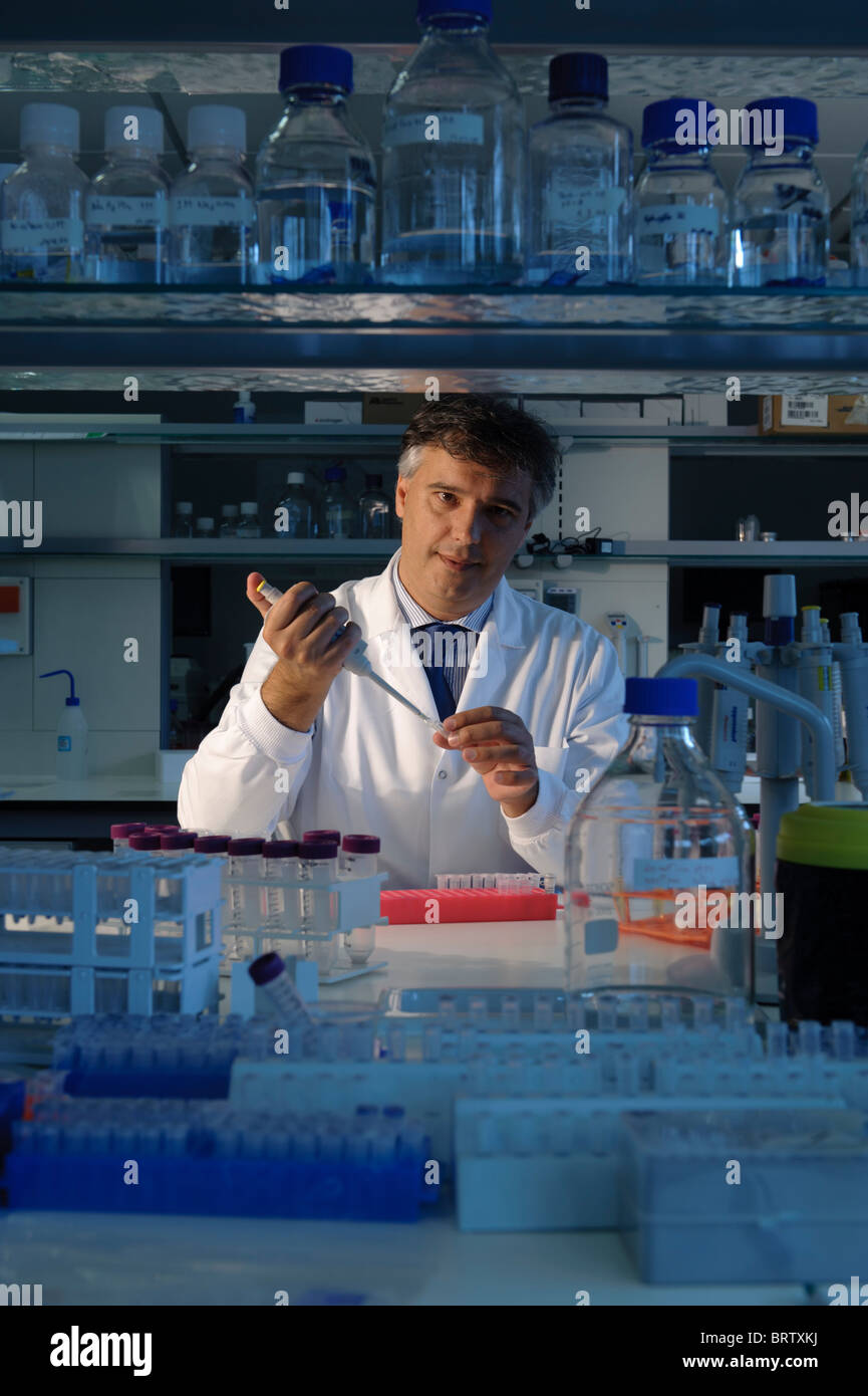 Scientist working in lab - Stock Image