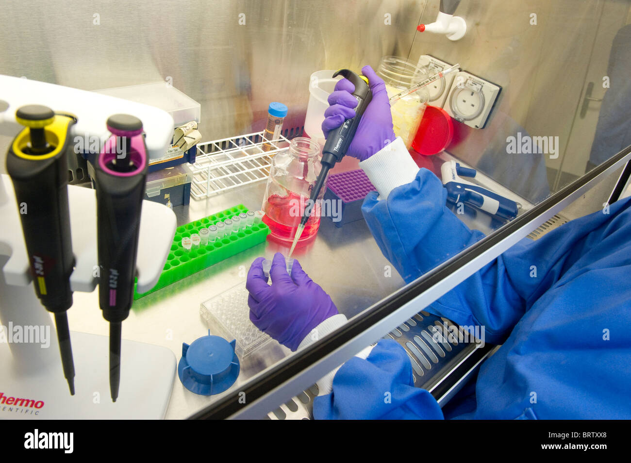 Biochemical and gene research are the backbone of modern medical research - Stock Image