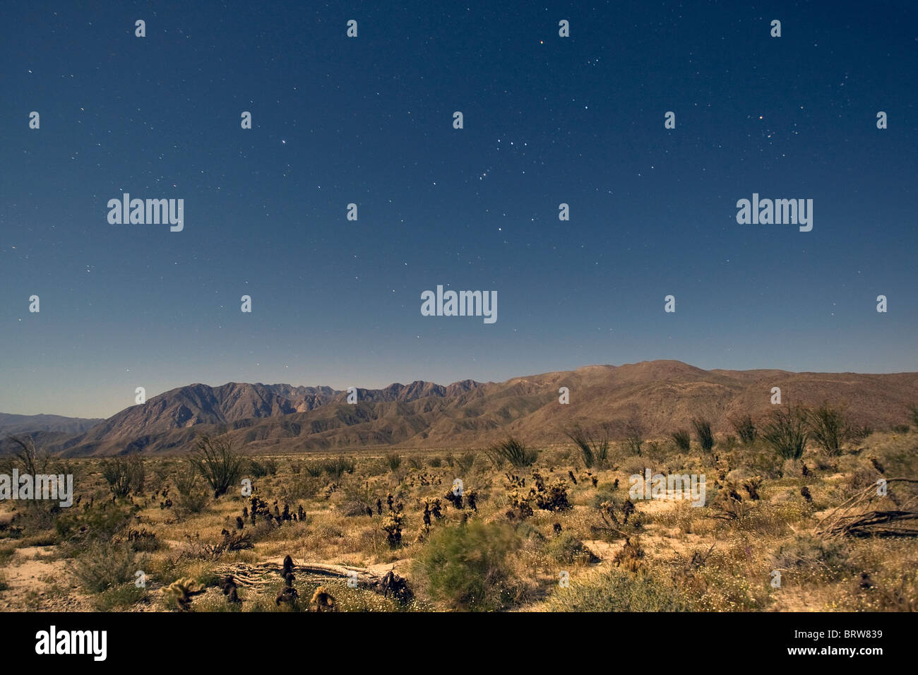 Clear night sky in Anza Borrego Desert State Park, California. - Stock Image