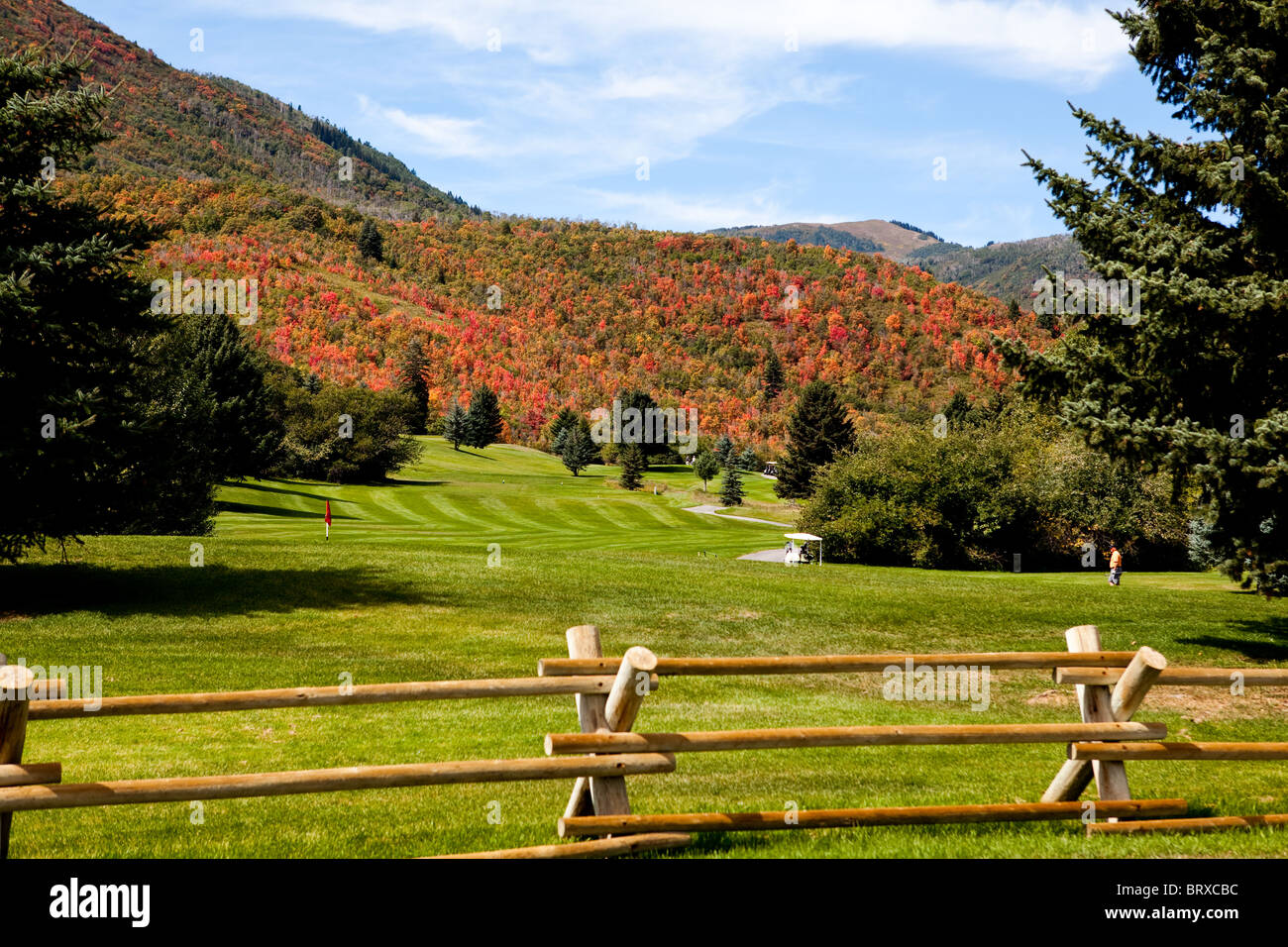 beautiful golf course at the edge of the forest, taken during the fall with autumn colors in the back ground - Stock Image