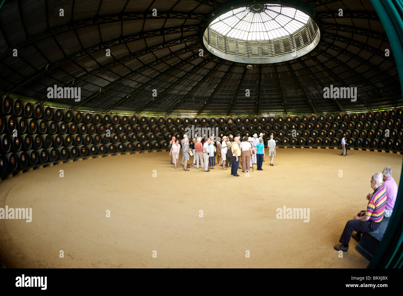 Visitors to Gonzalez Byass look at the sherry barrels which have a crest for each country that they are exported - Stock Image