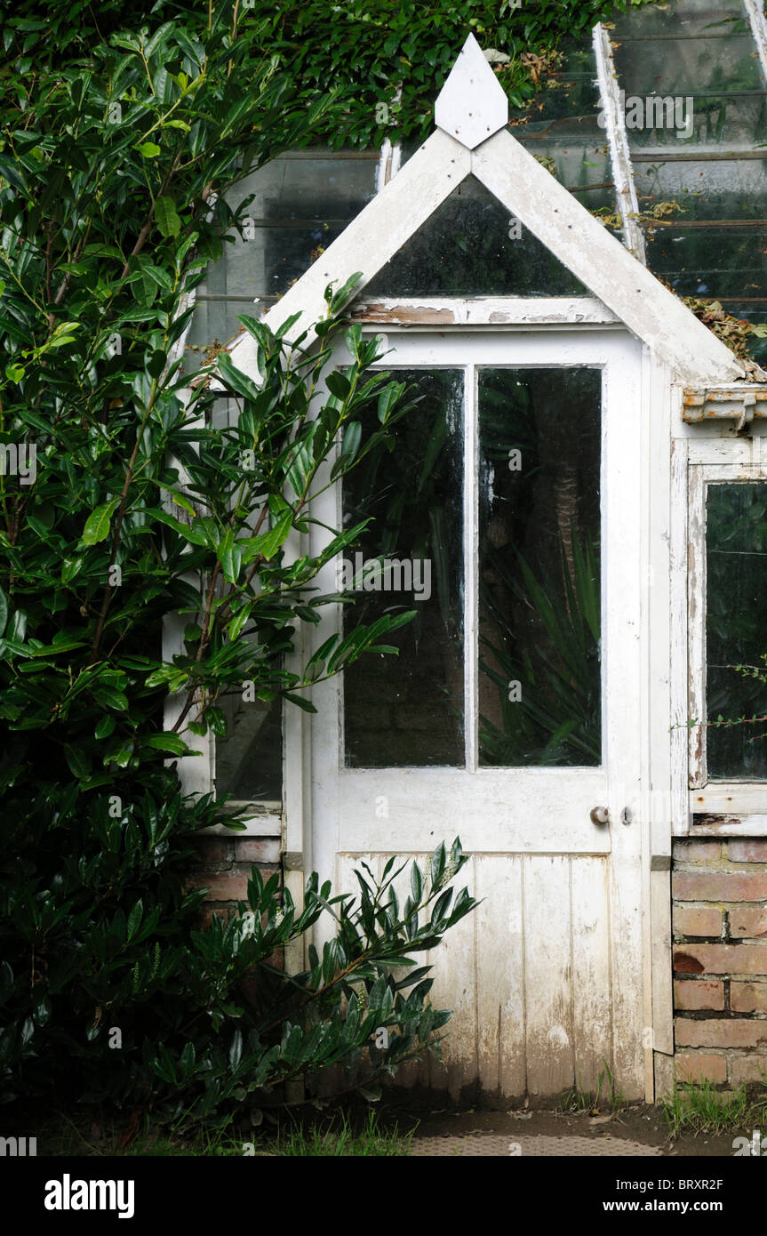 door of into an old decrepit victorian style greenhouse peeling paint disused disrepair - Stock Image