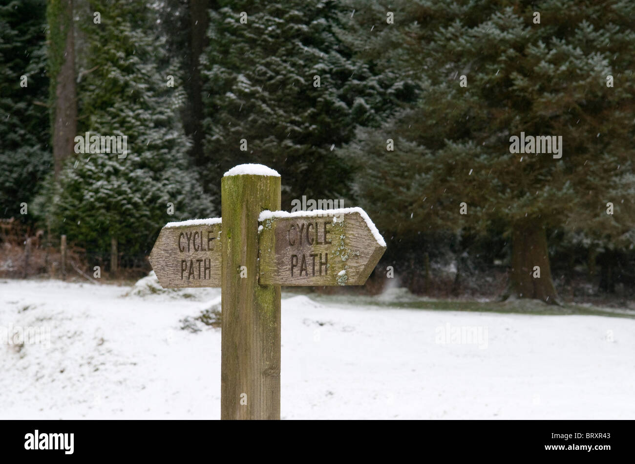 Wooden cycle path direction sign in snow, Dartmoor, Devon UK - Stock Image