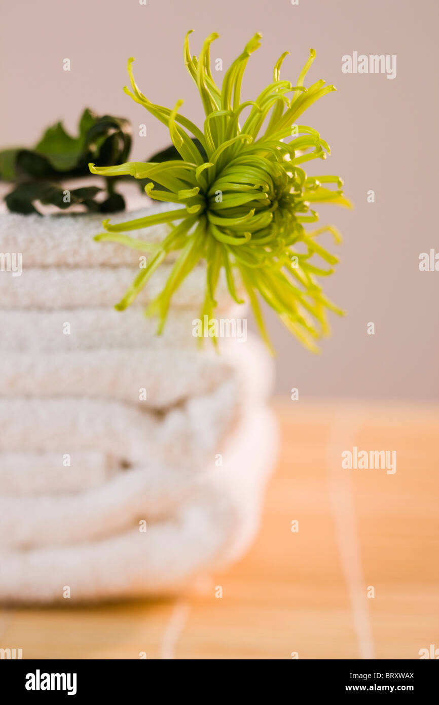 Single flower stack of white towels - Stock Image