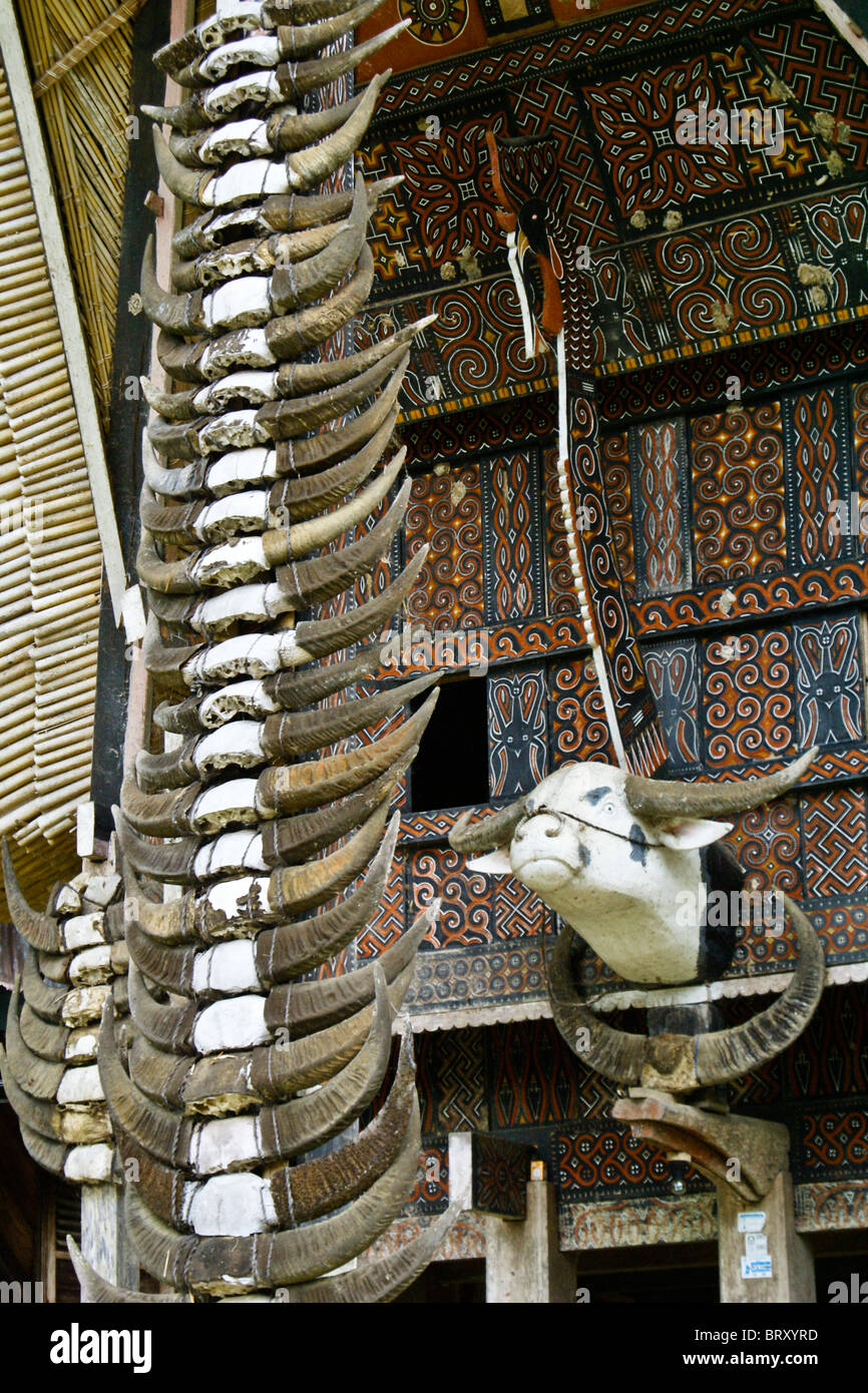 Water buffalo horns on Torajan house, Kete Kesu, Tana Toraja, South Sulawesi, Indonesia - Stock Image