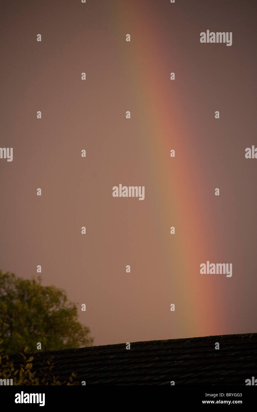 Rainbow colours - Stock Image
