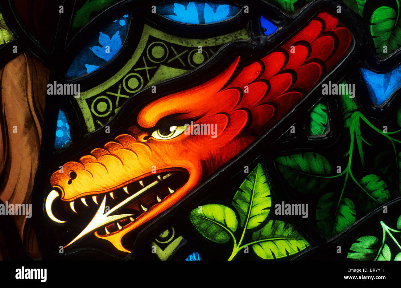 Ely Cathedral, Stained Glass Museum, Detail from Temptation of Eve, 1858, Pugin, serpent, forked tongue snake serpents - Stock Image