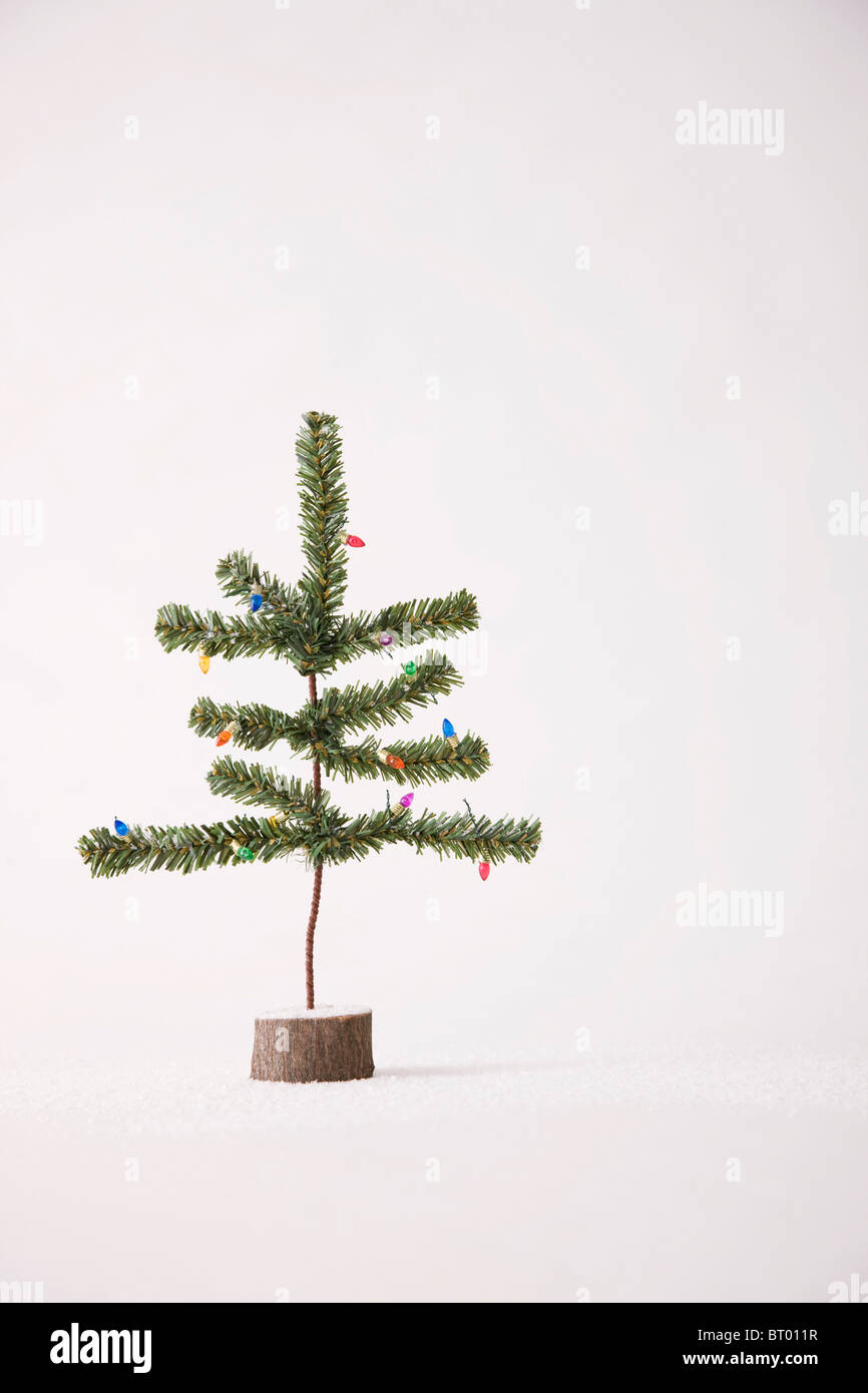 Small Christmas tree against white background - Stock Image