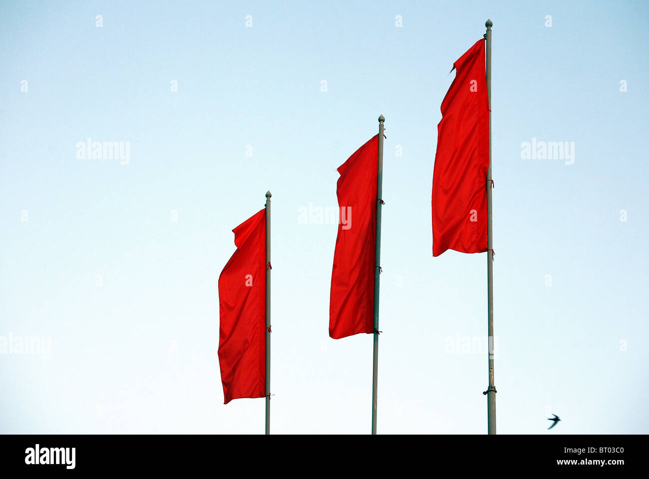 Three red flags, Brest, Belarus - Stock Image