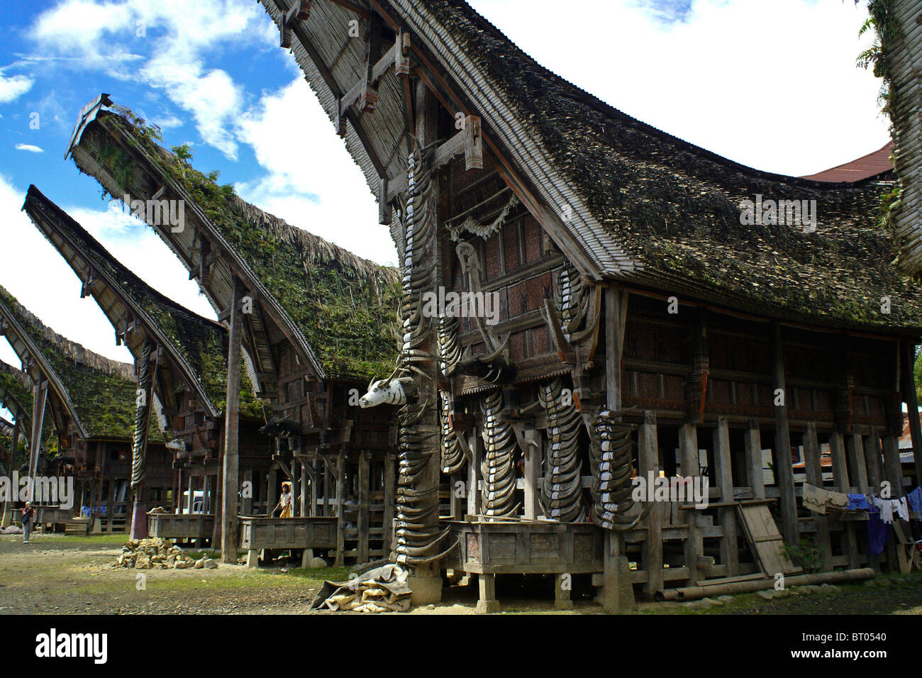 Traditional Torajan houses, Kete Kesu, Tana Toraja, South Sulawesi, Indonesia - Stock Image