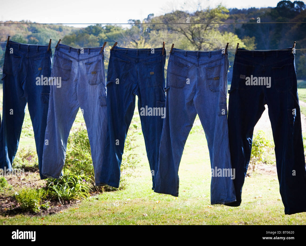 Back lit blue jeans hanging on clothes line - Stock Image