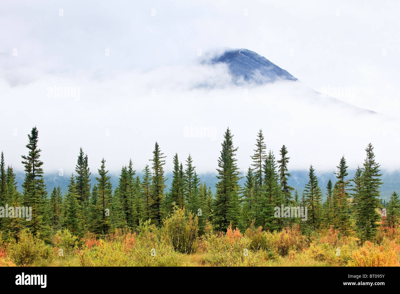 Fall colors of the Cascade Range shrouded in cloud.  Vermillion Lakes, Banff National Park, Alberta, Canada. - Stock Image
