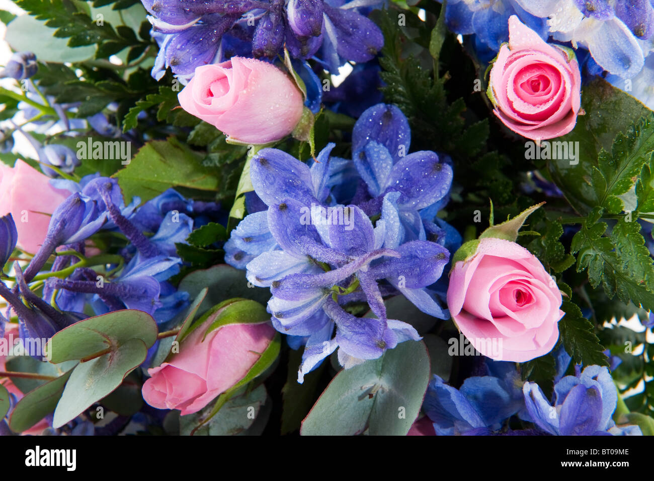 Mazzo Di Fiori Blu.Blue Larkspur And Pink Roses In Mixed Flower Bouquet Stock Photo