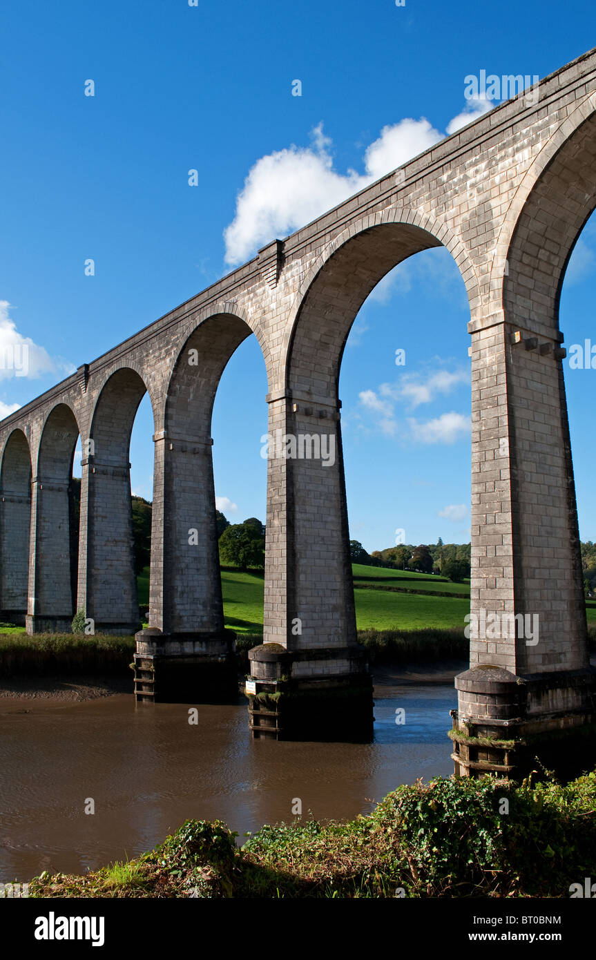 calstock viaduct connecting cornwall with devon over the river tamar - Stock Image