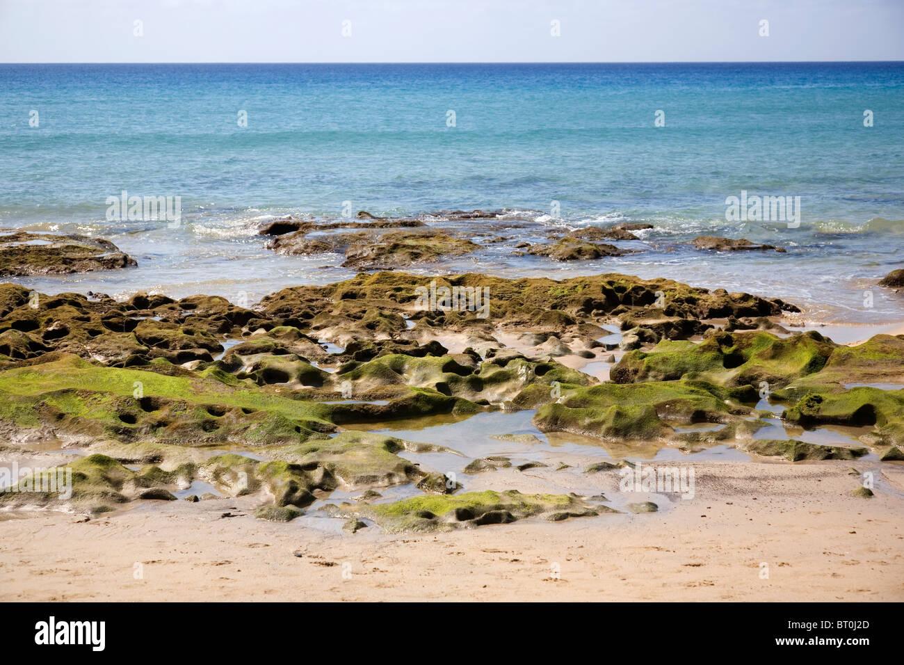 Beach shore at Porto Santo Beach - Madeira - Stock Image