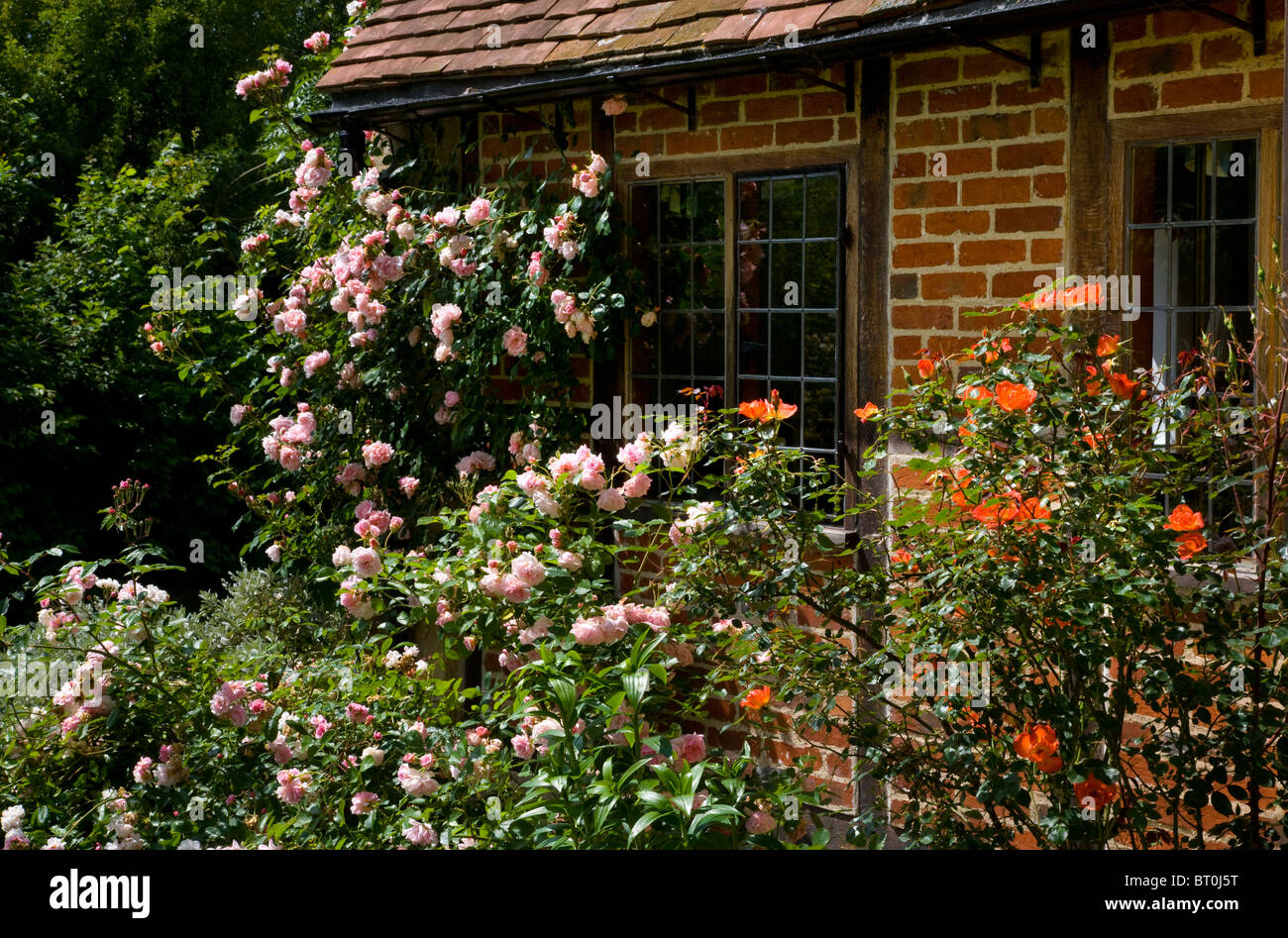 English Country Garden Stock Photos & English Country Garden Stock ...
