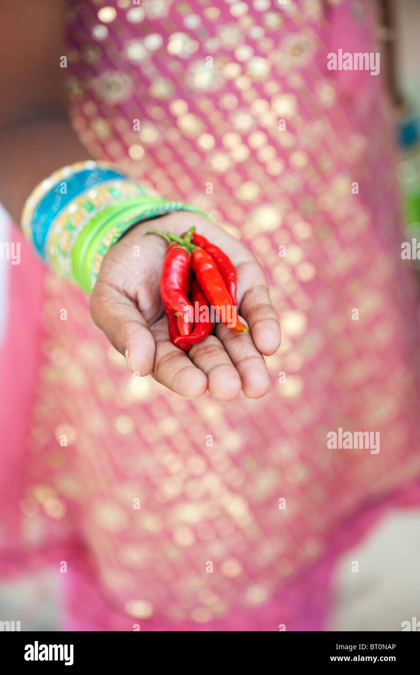 Indian girl holding red chilli peppers in cupped hands - Stock Image