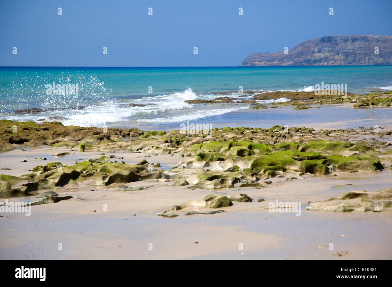 Beach shore at Porto Santo Beach - Madeira - Stock Image