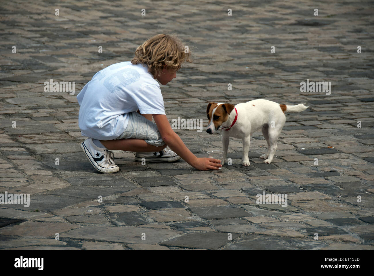 Man's best friend: boy gives dog a cup of water on a hot day in Italy - Stock Image