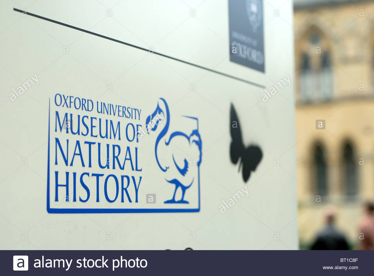 Oxford UK University Museum of Natural History and Pitt Rivers Museum. - Stock Image