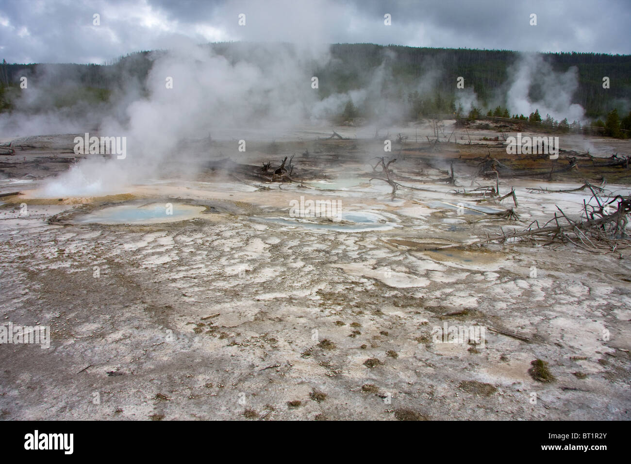 Hot springs and steam vents at Norris Geyser Basin, Yellowstone National Park, USA - Stock Image