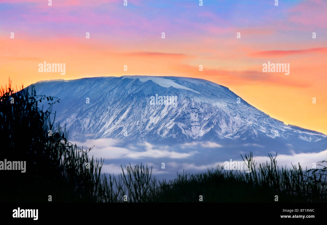 Kilimanjaro at sunrise, Amboseli national park, Kenya, Africa - Stock Image