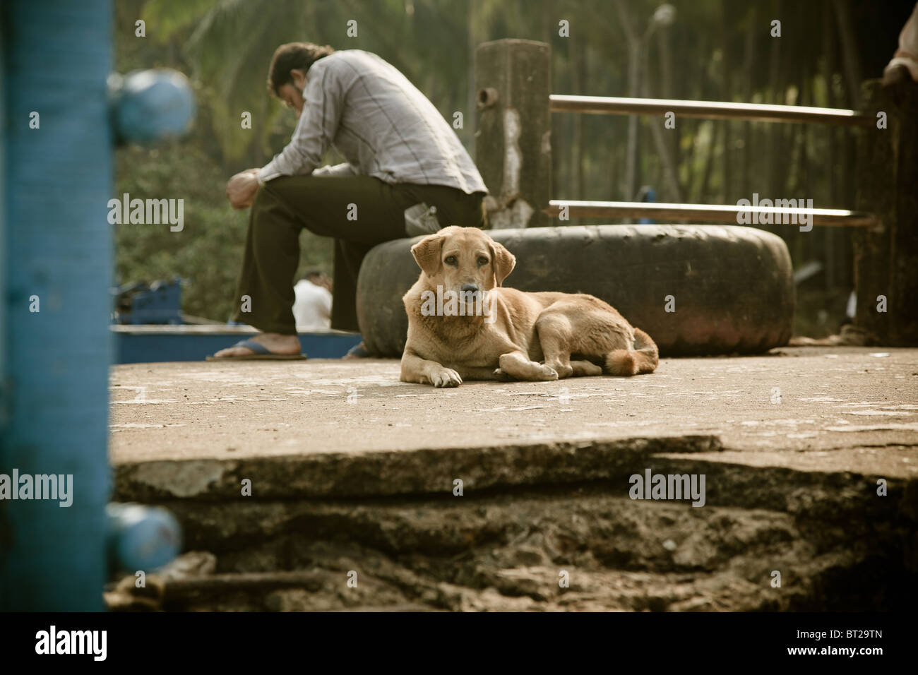 Editorial photo of dog laying near sad master - Stock Image