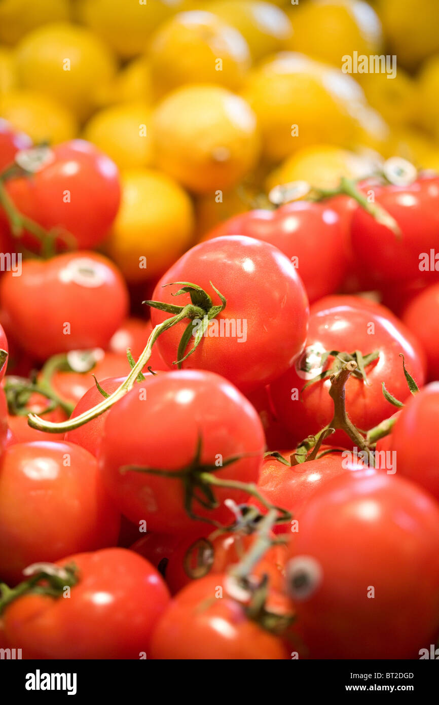 Red Tomato for background, close up shot - Stock Image