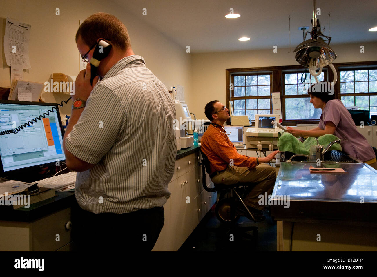 Veterinarian and vet techs at a veterinary practice - Stock Image