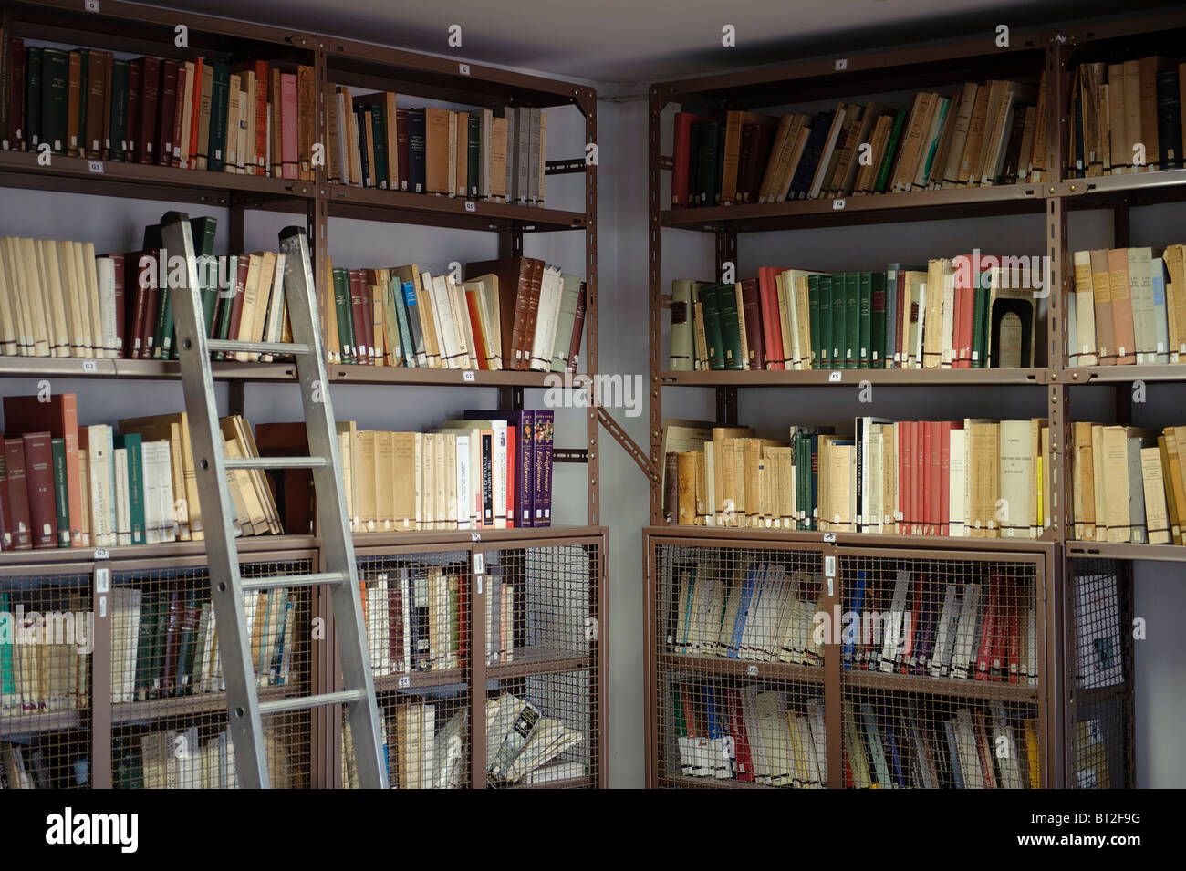 Detail View Of Metal Ladder Resting On A Bookshelf In College Library