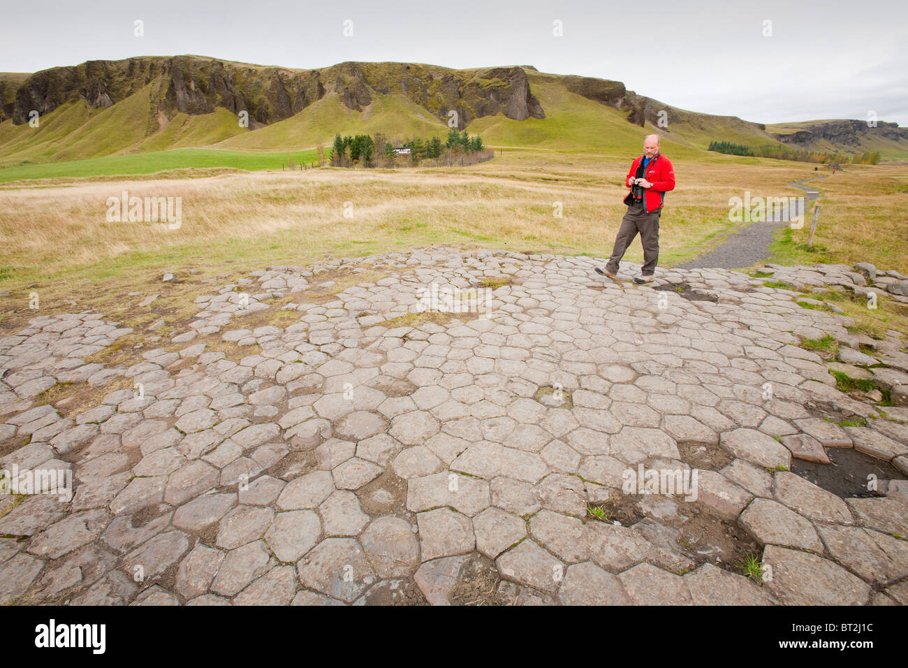 The church floor, a flat area of columnar jointing in Basalt rock at Kirkjubaejarklauster on Iceland's south - Stock Image