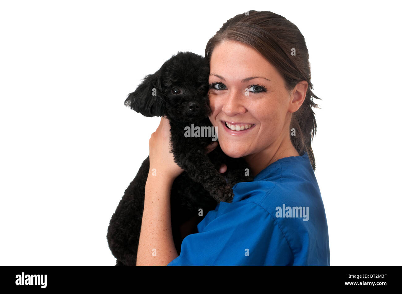 Veterinary assistant holding pet poodle isolated on white background with copy space. - Stock Image