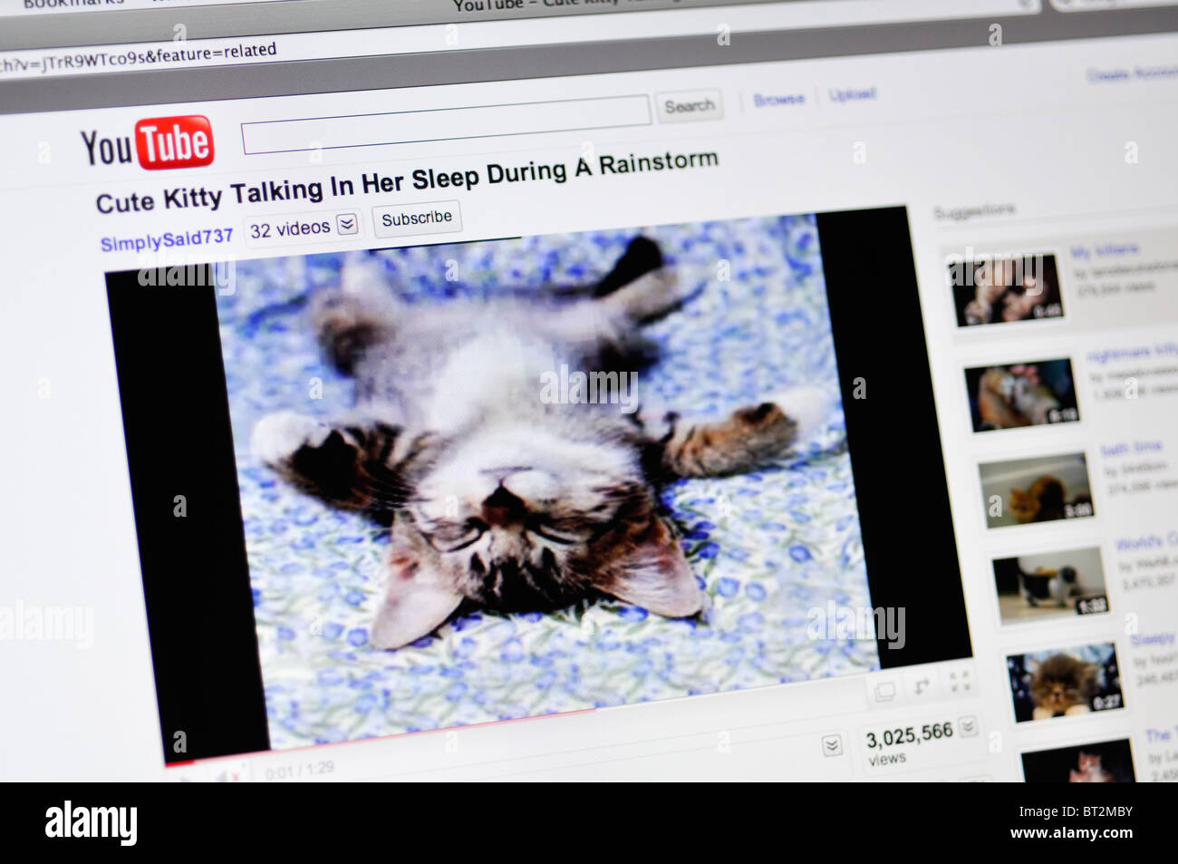 Image of: Cute Youtube Website Showing Funny Cat Alamy Youtube Website Showing Funny Cat Stock Photo 32022031 Alamy