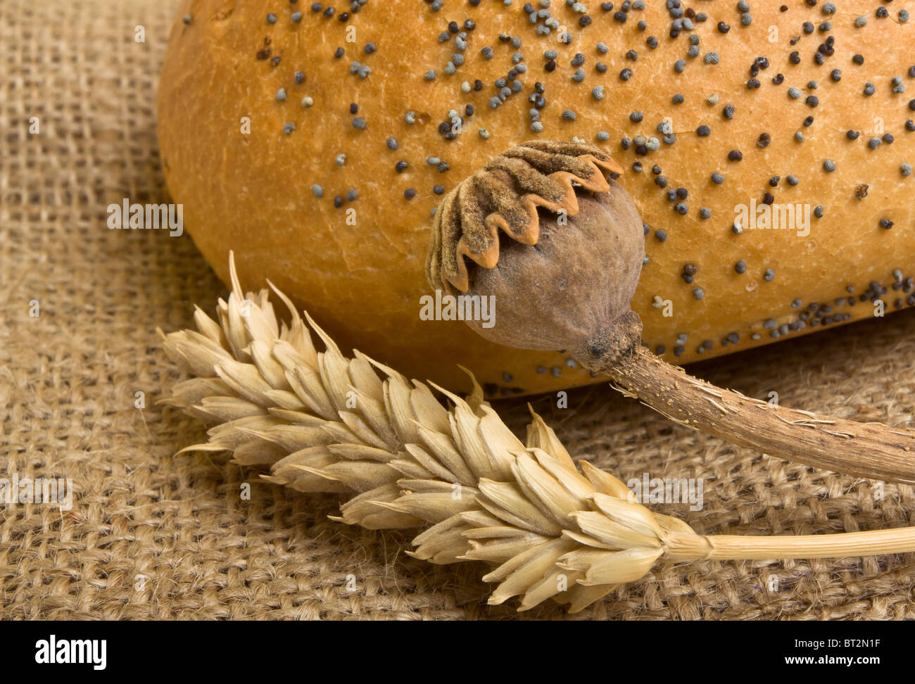 Poppy seeded bloomer on sacking with dried ear of wheat and poppy stem - Stock Image