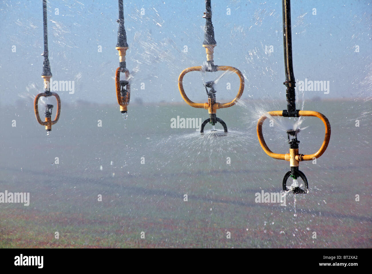 Water sprinklers of a center pivot crop irrigation system - Stock Image