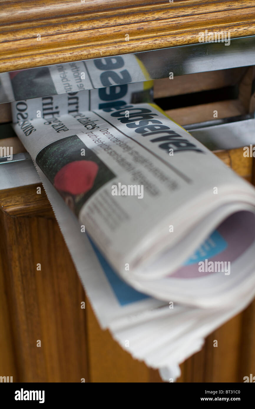The observer newpaper in letterbox - Stock Image
