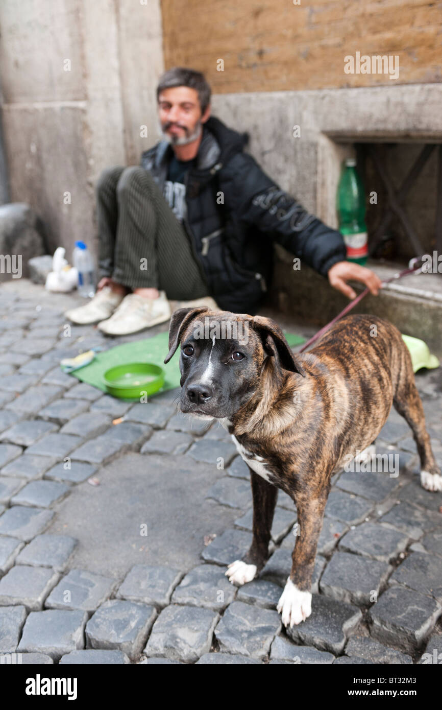 Tramp (beggar) on the streets of Rome with dog. - Stock Image