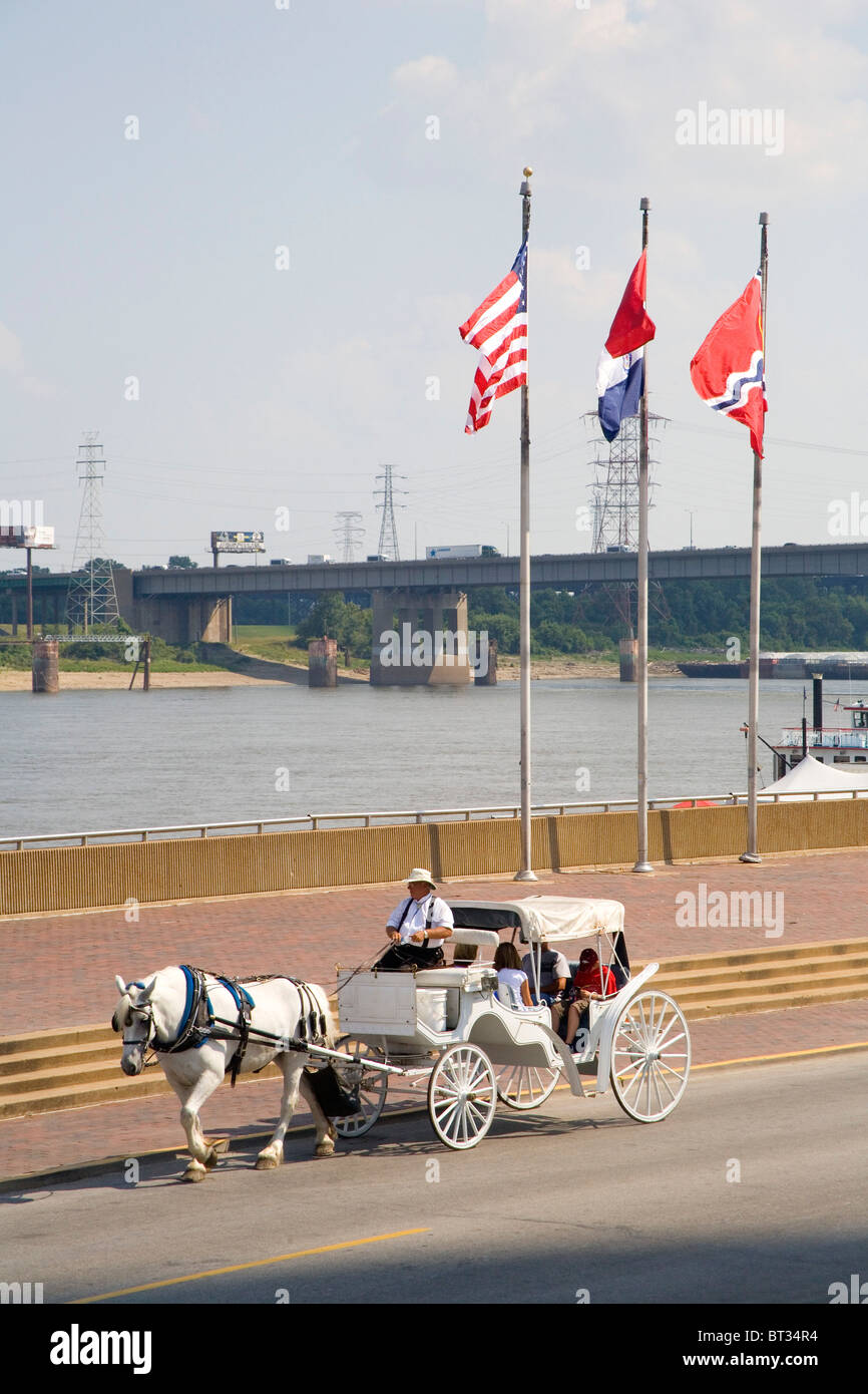 Horse carriage ride with tourists at the St. Louis Gateway Arch - Stock Image