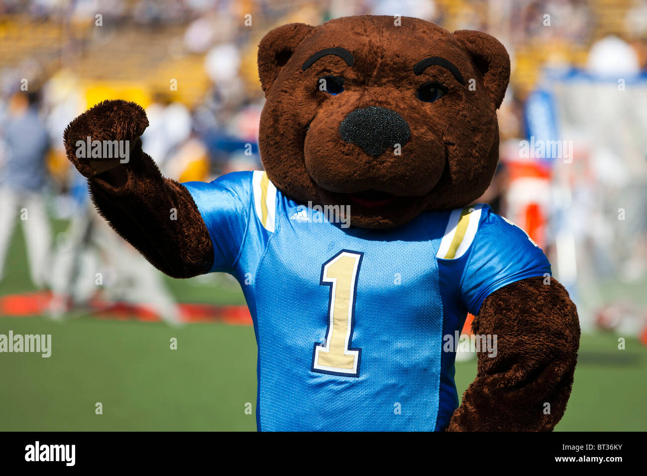 ucla bruins bear mascot at memorial stadium university of